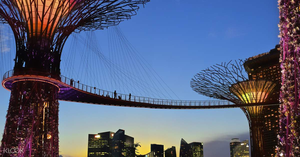 Gardens by the Bay: OCBC Skyway - Klook